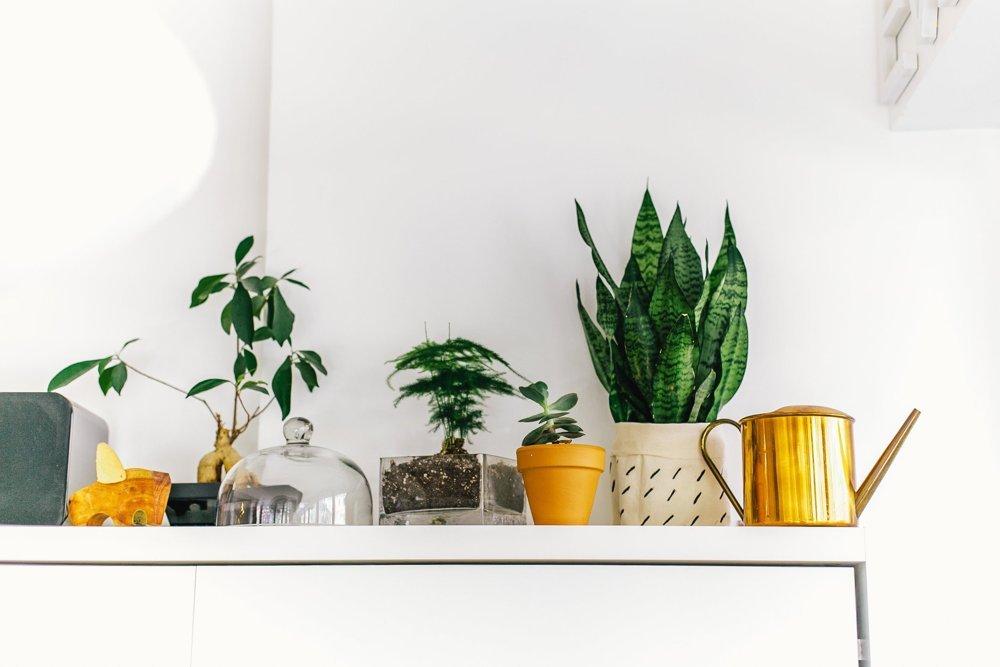 optimiser-un-petit-appartement_mariekke11