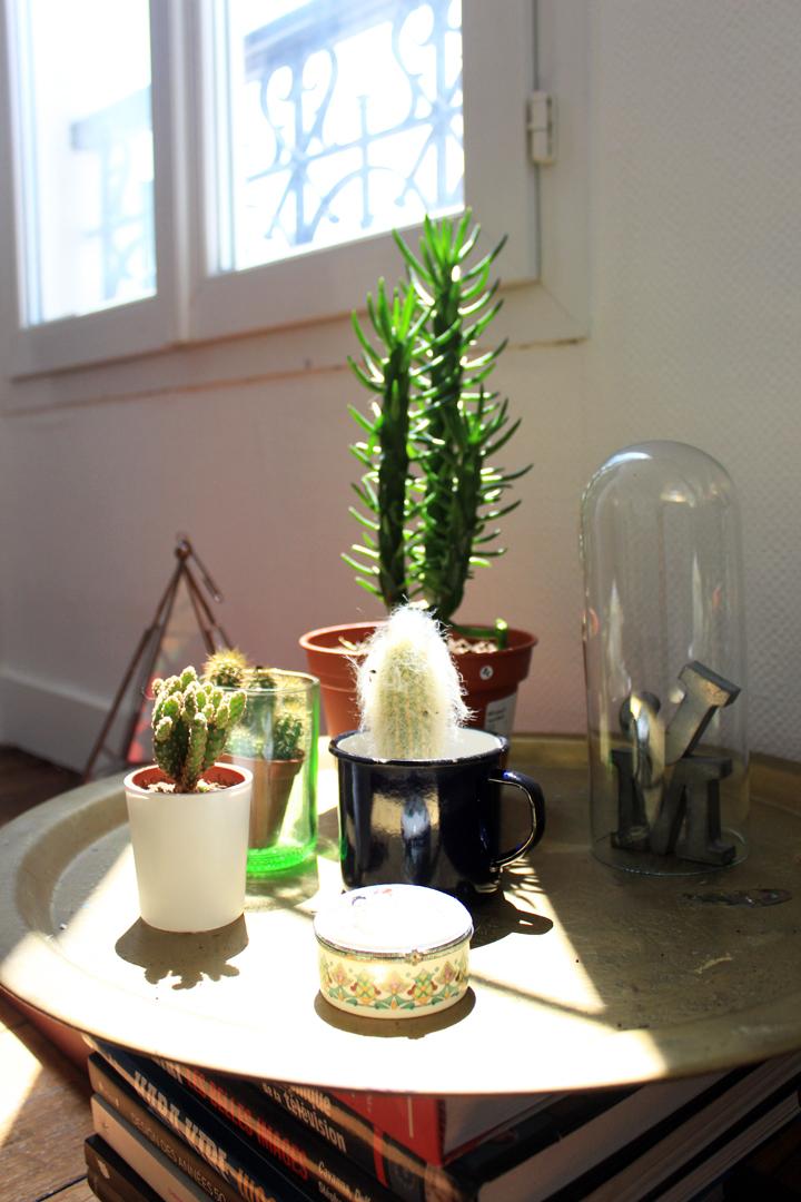 mon_jardin_piquant_mariekke.jpg2
