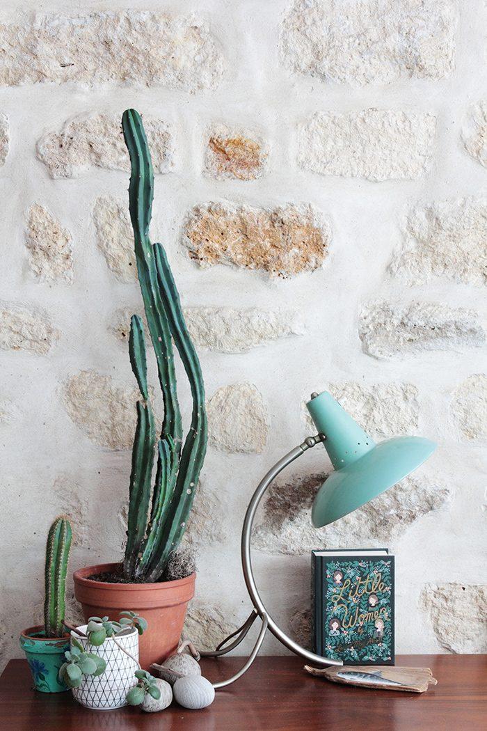 ib-remplacement-oasis-de-verdure