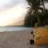 Carnet de voyage en Polynésie française